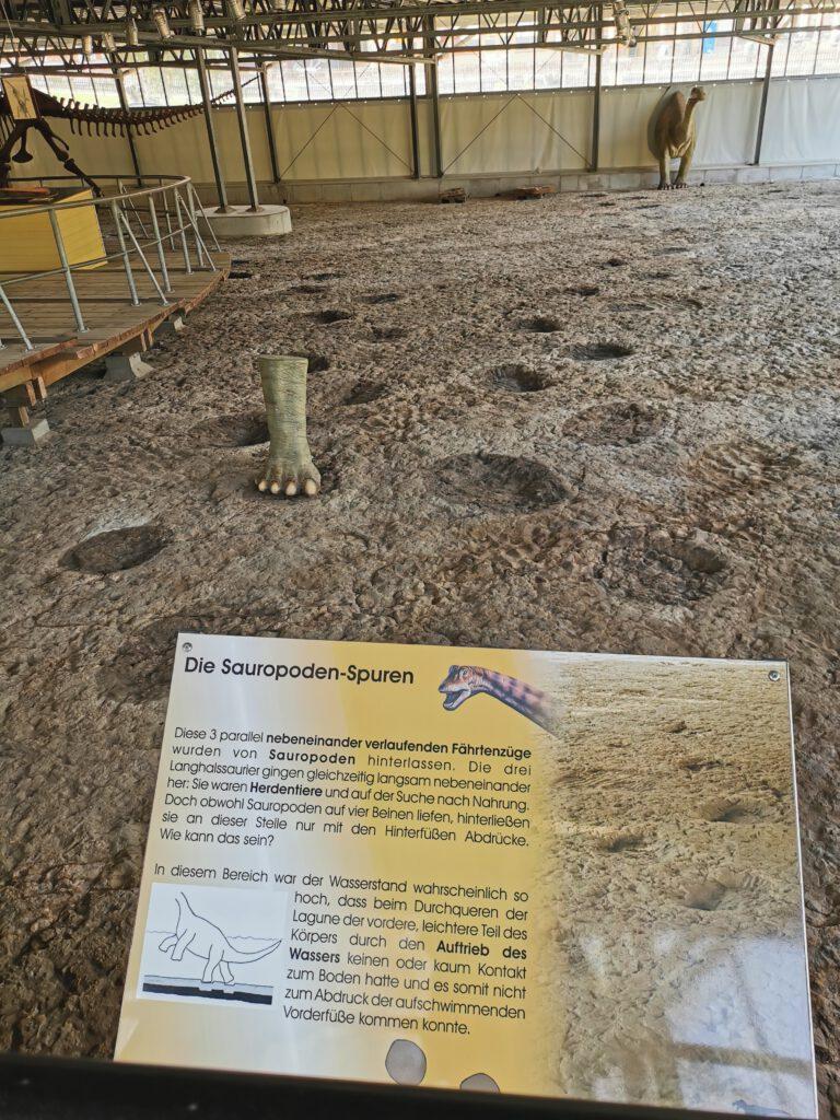 Dino Park Fussspuren